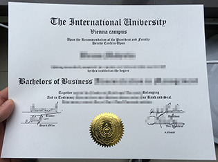 The International University degree