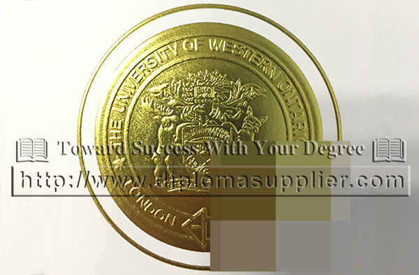University of Western Ontario gold s