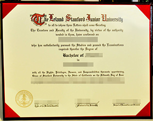 fake Stanford University degree