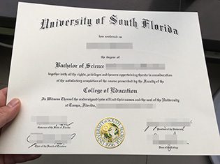 USF fake degree, University of south