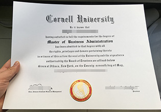 How to buy Cornell University fake d