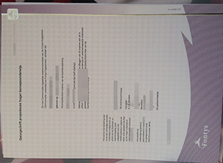 buy Fontys University fake diploma,