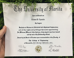 where to order University of Florida