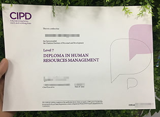 where can I buy CIPD level 7 diploma