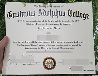 buy Gustavus Adolphus College fake d
