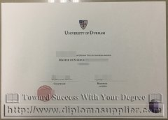 MSc degree from University of Durham