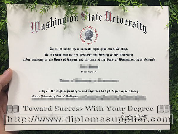 Washington State University diploma, WSU degree, USA degree