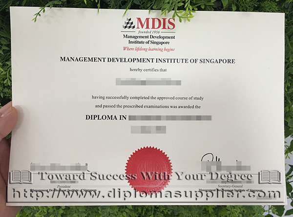 MDIS diploma in Business Management